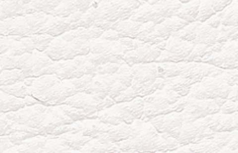White 07